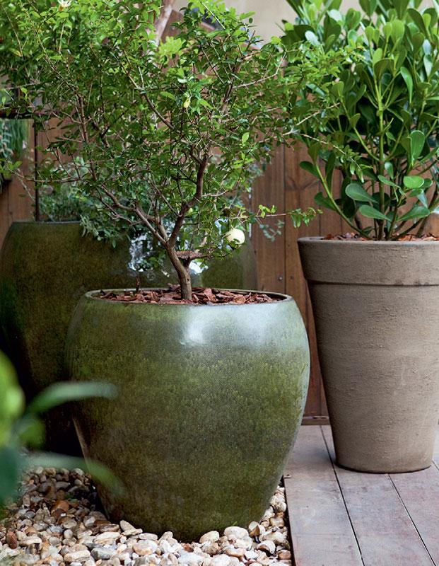 imagens jardins lindos : imagens jardins lindos:03-cinco-jardins-lindos-feitos-de-vasos (1)