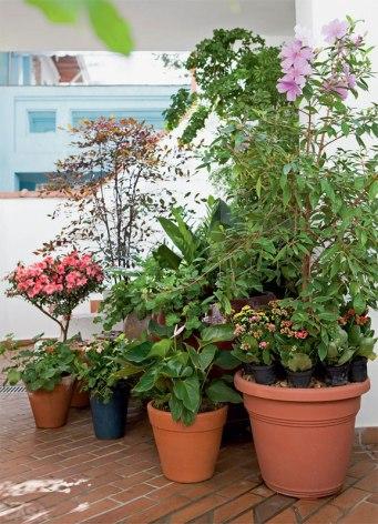 08-cinco-jardins-lindos-feitos-de-vasos