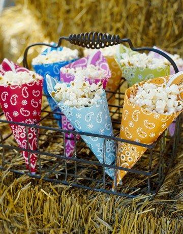 bandana-popcorn-cones-0908-de-602285362