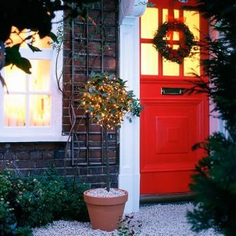 lights-in-bay-tree-10-best-christmas-outdoor-lights-housetohome