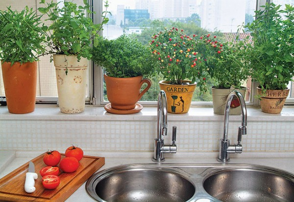 horta-na-cozinha-600x414.jpg
