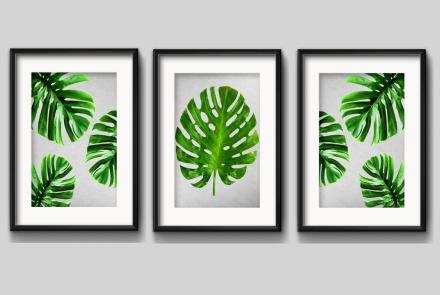 3-quadros-folhas-minimalista-planta-verde-decoracao-paspatur-D_NQ_NP_648247-MLB27379972963_052018-F