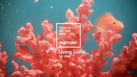 Living-Coral-Pantone-2019.jpg